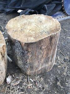 Cutting block/tree stump