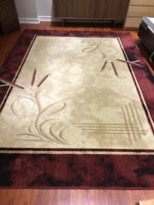 Area rug in very good condition