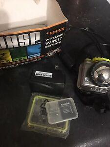 Wasp camera. Go pro