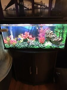 36 gallon fish tank with stand