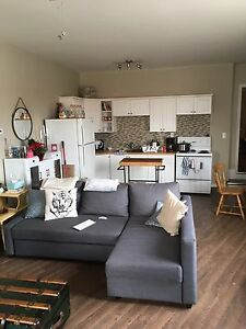 Huge bright 1 bedroom on Trent express
