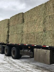 Hay for Sale! LARGE BALES ONLY!
