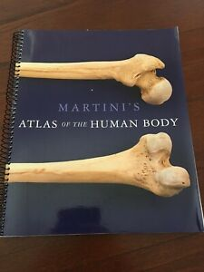 Textbook Martini's Atlas of the Human Body Wavell Heights Brisbane North East Preview