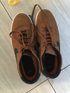 New condition Nike SB shoes