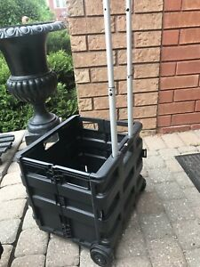 Collapsible trolly box