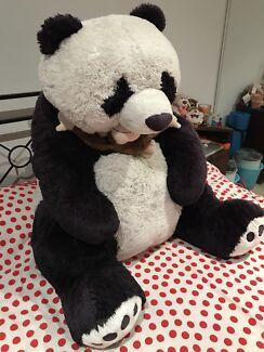 Giant panda for sale