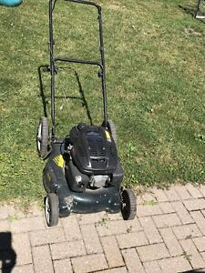 Snowblowers and Lawnmower