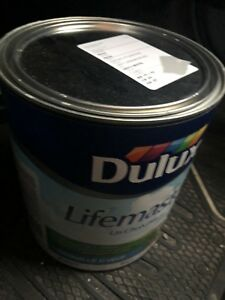 Dulux lifemaster paint