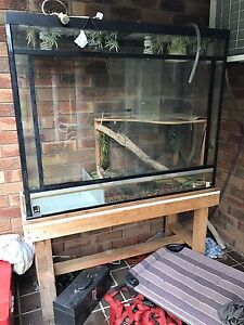 Standing Double level lizard tank with water area Glenhaven The Hills District Preview