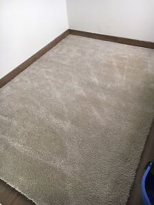 Massive room rug Mount Lewis Bankstown Area Preview