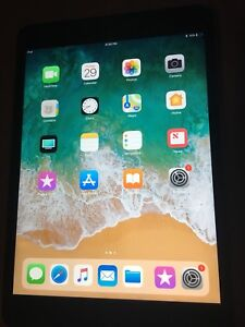 iPad mini 3 64GB wifi only