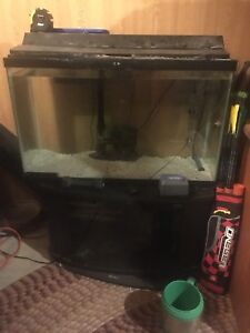 Well established 35gallon tank comes with everything you need.