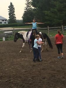 Vaulting & Trick Riding Camp Aug 20-24th