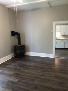 One Bedroom Apartment for Rent - Fully Renovated!
