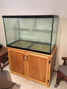 65 gal fish tank with Stand