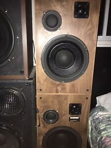 "350w 12"" speakers with amplifier"
