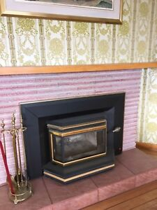 Wood burning fireplace glass and steel insert
