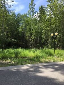 Riverfront and street side lots available