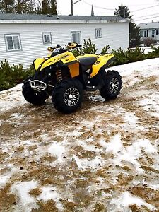Mint Can Am Renegade (negotiable)