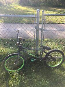 DK Bmx Bicycle