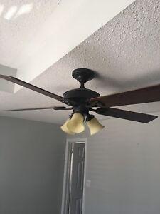 Hunter Douglas ceiling fan with lights