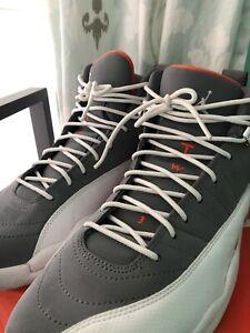 Cool grey Jordan 12s VNDS