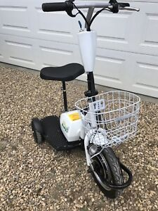 GoPET personal electric transporter