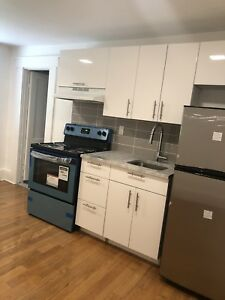 Beautiful renovated 2.5 apartment NEAR GUY CONCORDIA