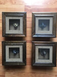 Animal Themed Shadow Boxes
