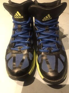 Authentic 100% Adidas Basketball shoes