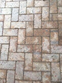 Paving bricks (Free)