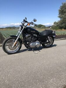 2010 Harley 1200 sportster low 17kms SOLD