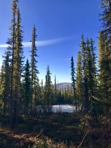 VIEW LOT!!! Beautiful 1 Acre Lot on the Dome - DAWSON CITY