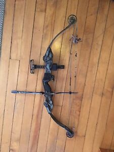 Nice compound bow with hard case, arrows and accessories.