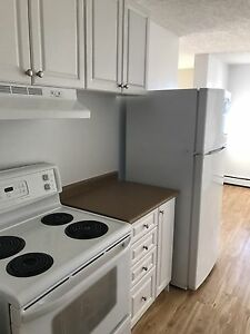 3 Bedroom Apartment - Large rooms
