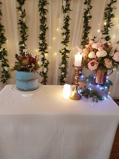 Flower wall hire daintree wall party hire gumtree australia flower wall backdrop to hire adelaide cbd junglespirit Images