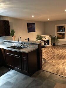 Brand New Renovated Mini Home