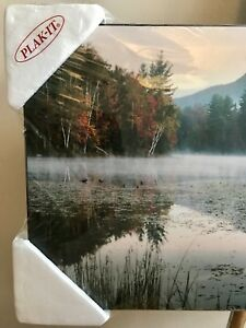 Art: Lake & Forest Reflection Plaque Poster