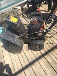 Year end deal on snowblower $120. Need done today