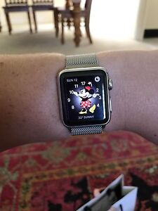 Stainless Steel Apple Watch Cameron Park Lake Macquarie Area Preview
