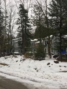 Tremblant condo for rent