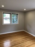 Painting and Renovation Services