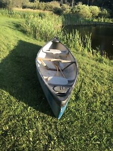 14ft canoe with paddles $340