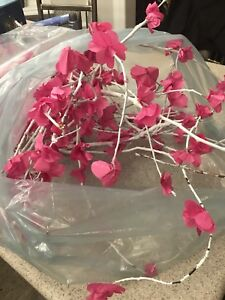 Bag of Japanese Cherry Blossoms