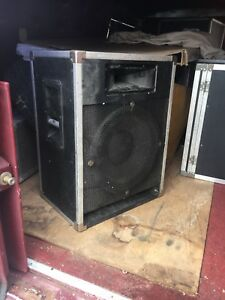 Traynor cabs 15 inch speakers