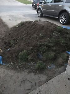 Soil and old grass removal -ASAP
