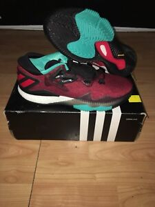 Adidas crazylight boost low 2016 size 9.5