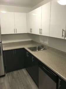 Upgraded 2 bedroom In Trenton!