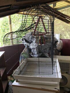 Wanted: Medium bird cage