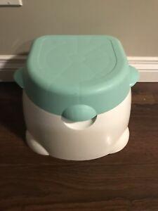 3 in 1 potty